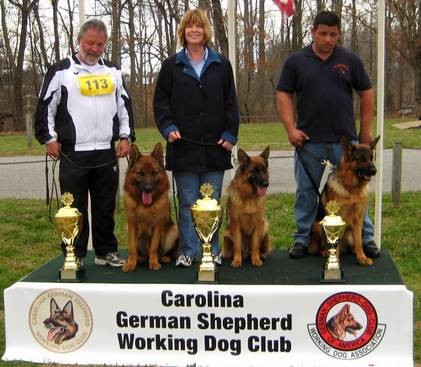 Working Dog Club